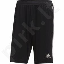 Šortai futbolininkams Adidas Tiro 19 Training Short M D95940