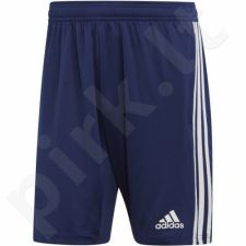Šortai futbolininkams Adidas Tiro 19 Training Short M DT5173