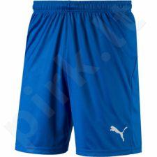 Šortai Puma Liga Shorts Core M 703436 02