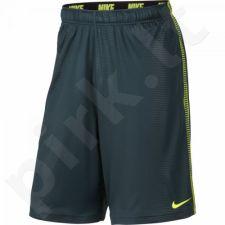 Šortai Nike Fly SNL Print 607769-392