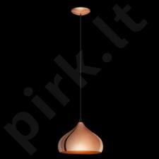 Pakabinamas šviestuvas EGLO 49449 | HAPTON