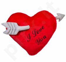 Gigantiška pliušinė širdis su strėle (60cm)