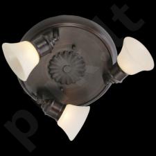 Taškinis šviestuvas EGLO 89061 | ALAMO