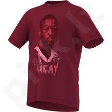 Marškinėliai adidas GFX Player Tee Dwyane Wade Junior S86806