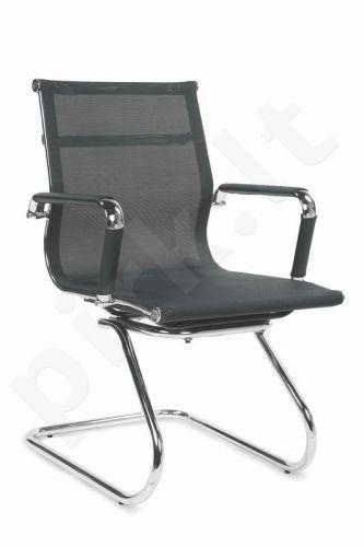 Lankytojo kėdė OPERA SKID