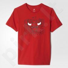 Marškinėliai Adidas Chicago Bulls Junior AP5722