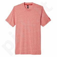 Marškinėliai Adidas Basic Tee M AY1687