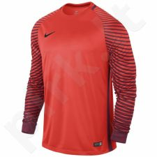 Marškinėliai vartininkams Nike Gardien GK M 725882-671