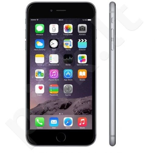Apple iPhone 6S 16GB Gray