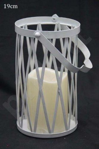 Žvakidė 89603