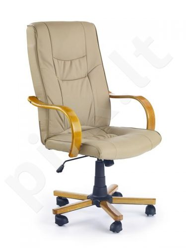 Darbo kėdė RAYAN
