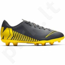 Futbolo bateliai  Nike Mercurial Vapor 12 Club MG JR AH7350-070