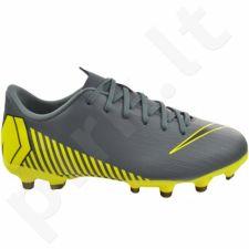 Futbolo bateliai  Nike Mercurial Vapor 12 Academy MG Jr AH7347-070
