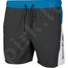 Maudymosi šortai Speedo Sport Splice Watershort M 8-09265B470