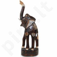 Dramblio statulėlė 105935