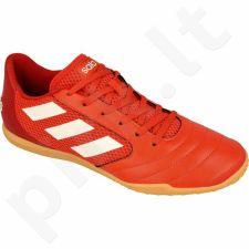 Futbolo bateliai Adidas  ACE 17.4 SALA M S82223