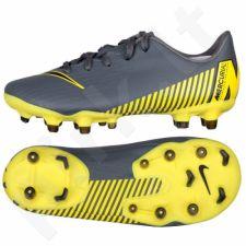 Futbolo bateliai  Nike Mercurial Vapor 12 Academy PS FG/MG JR AH7349-070