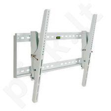4World LCD/PDP sieninis laikiklis 30-54'', palenkimas 15° TV svoris iki 60kg WHT