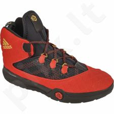 Krepšinio bateliai  Adidas D Rose Dominate 2016 M D70027