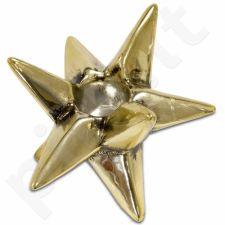 Žvaigždė-Prom.