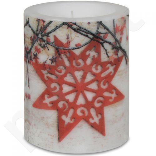 Žvakė Nordic Star 106742