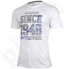 Marškinėliai Puma Fun Summer Logo Tee M 836592 02