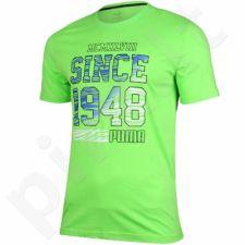 Marškinėliai Puma Fun Summer Logo Tee M 836592 20