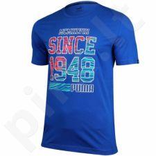 Marškinėliai Puma Fun Summer Logo Tee M 836592 16