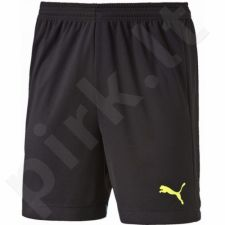 Šortai Puma IT evoTRG Shorts M 654757511