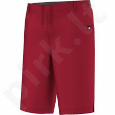 Šortai adidas EVERYDAY OUTDOOR Climb Long Shorts M S10195