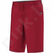 Šortai adidas EVERYDAY OUTDOOR Climb Long Shorts M S10195