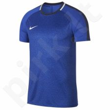 Marškinėliai futbolui Nike Dry Academy M AJ4231-405