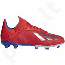 Futbolo bateliai Adidas  X 18.3 FG Jr BB9371