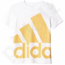 Marškinėliai Adidas Essentials Oversize Logo Junior AK2007
