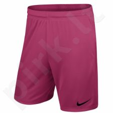 Šortai futbolininkams Nike Park II M 725887-616
