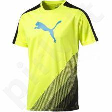 Marškinėliai futbolui Puma evoTRG Cat Graphic M 654771551