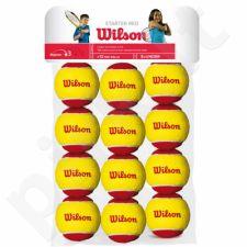 Teniso kamuoliukai Wilson Starter Red Junior 12 vnt.