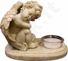 Žvakidė 52072