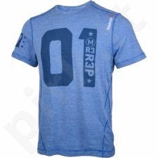 Marškinėliai treniruotėms Reebok Triblend Tee M AE5060