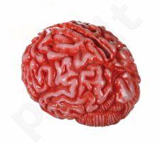"""Taupyklė """"Zombio smegenys"""""""
