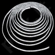 Baro apšvietimui EGLO 92066 | LED STRIPES-FLEX