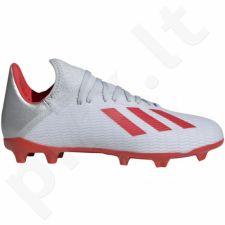 Futbolo bateliai Adidas  X 19.3 FG JR F35365