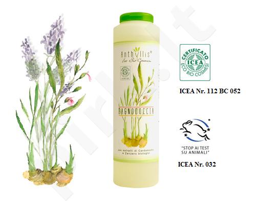 Anthyllis DUŠO ŽELĖ IR VONIOS PUTOS su augaliniais ektraktais ir kardamono ir imbiero eteriniu aliejumi 250 ml