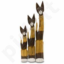 3 Katės 100/80/60 112440