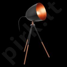 Stalinis šviestuvas EGLO 49385 | CHESTER