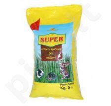 Kraikas graužikams SABBIA RODI SUPPER 5 kg