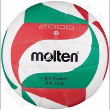 Tinklinio kamuolys Molten V5M2000-L