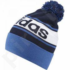 Kepurė  Adidas Performance Linear Pompom Beanie AY4904