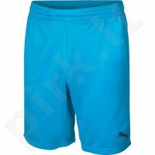 Šortai vartininkams  Puma GK Shorts Junior 70191941