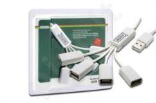 USB šakotuvas Digitus Slim Spider, 4 jungčių